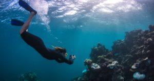 snorkel Australia