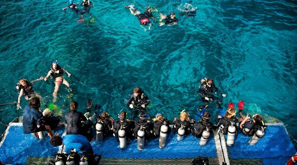 Dive Deck on Reef Experience