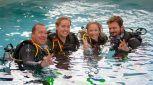 Learn to Dive Port Douglas